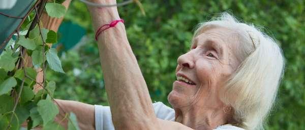Новый «налог на огород» для физических лиц – чего ждать?