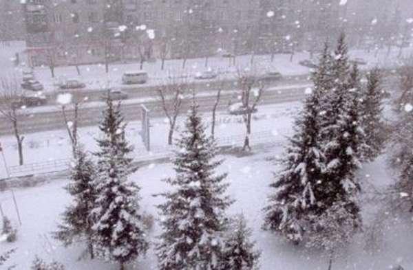 Выселение в зимний период времени
