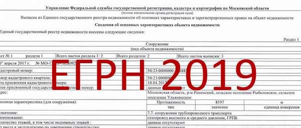 Выписка из ЕГРН в 2019 г.