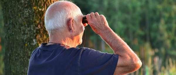 Минимальный прожиточный минимум для пенсионеров на 2019 год – последние новости о доплатах